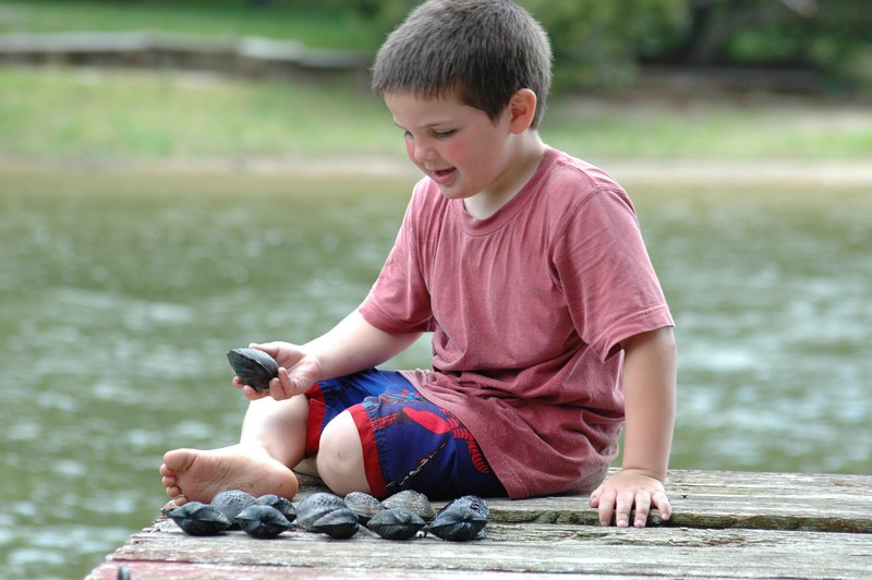 Мальчик и моллюски